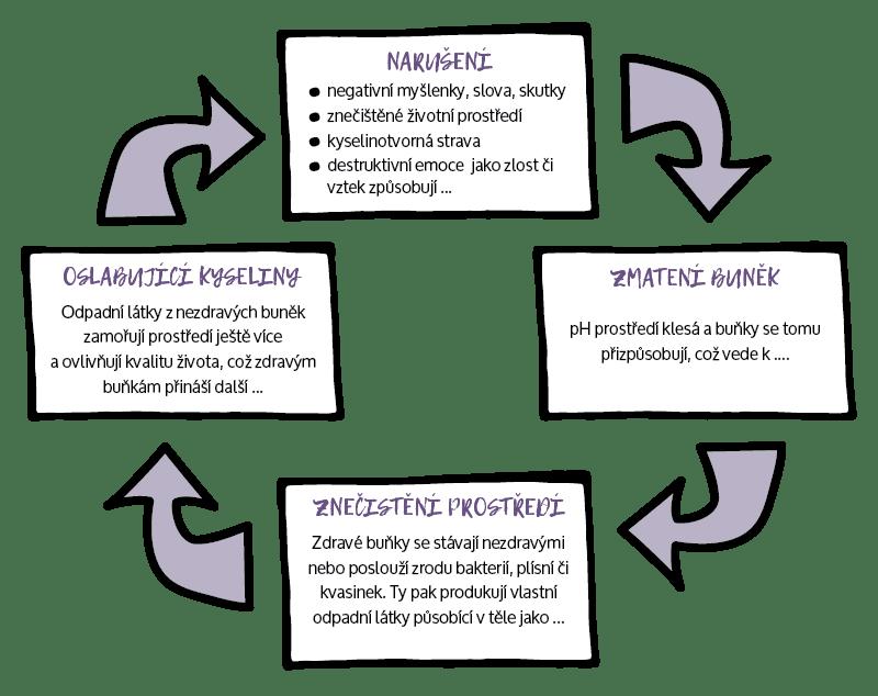 Kruh vnitřní nerovnováhy