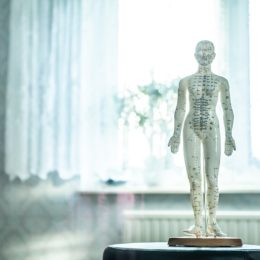 lymfatický systém – zázračná lymfa