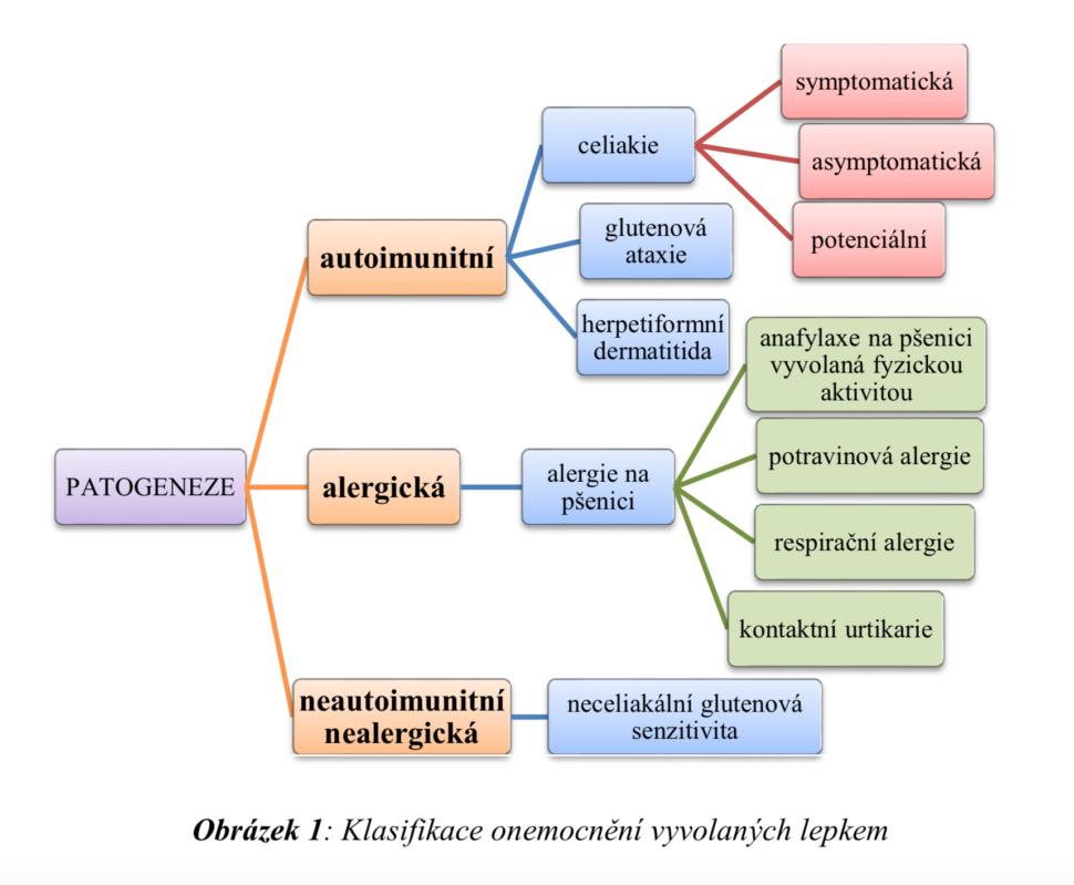 alergie na lepek - klasifikace onemocnění vyvolaných lepkem